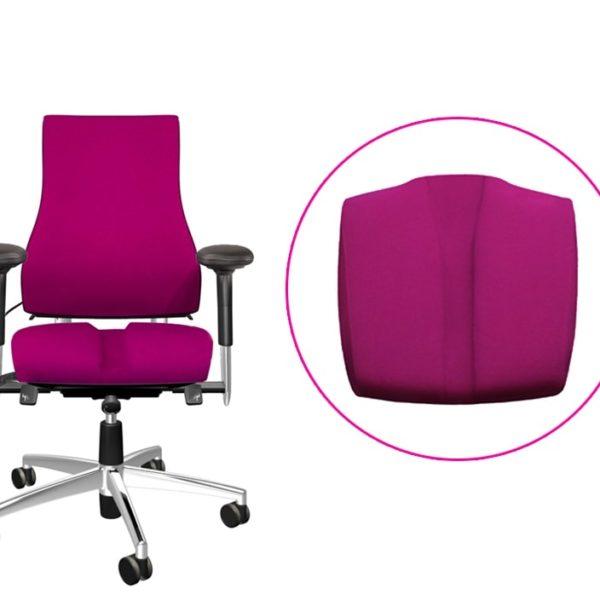 scaun ergonomic dureri spate