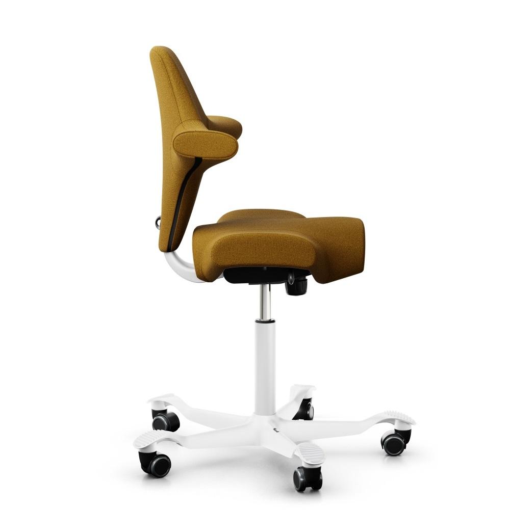scaun ergonomic tip sa