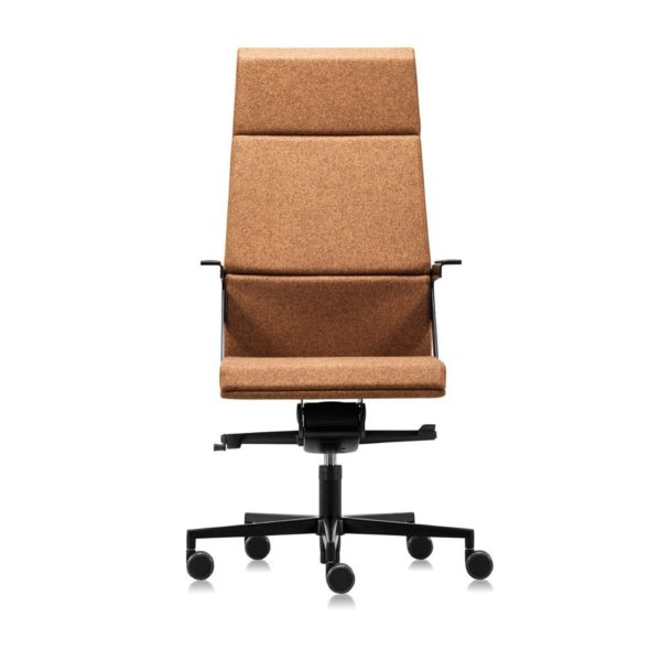 scaun perna ergonomica