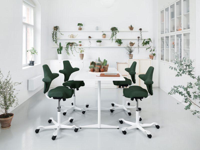 scaune HAG_Capisco
