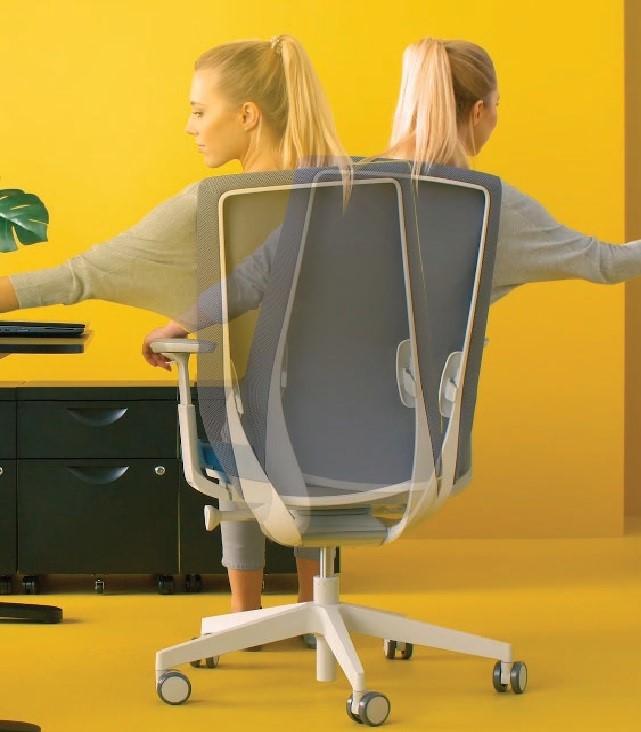 scaun ultra ergonomic Accis Pro
