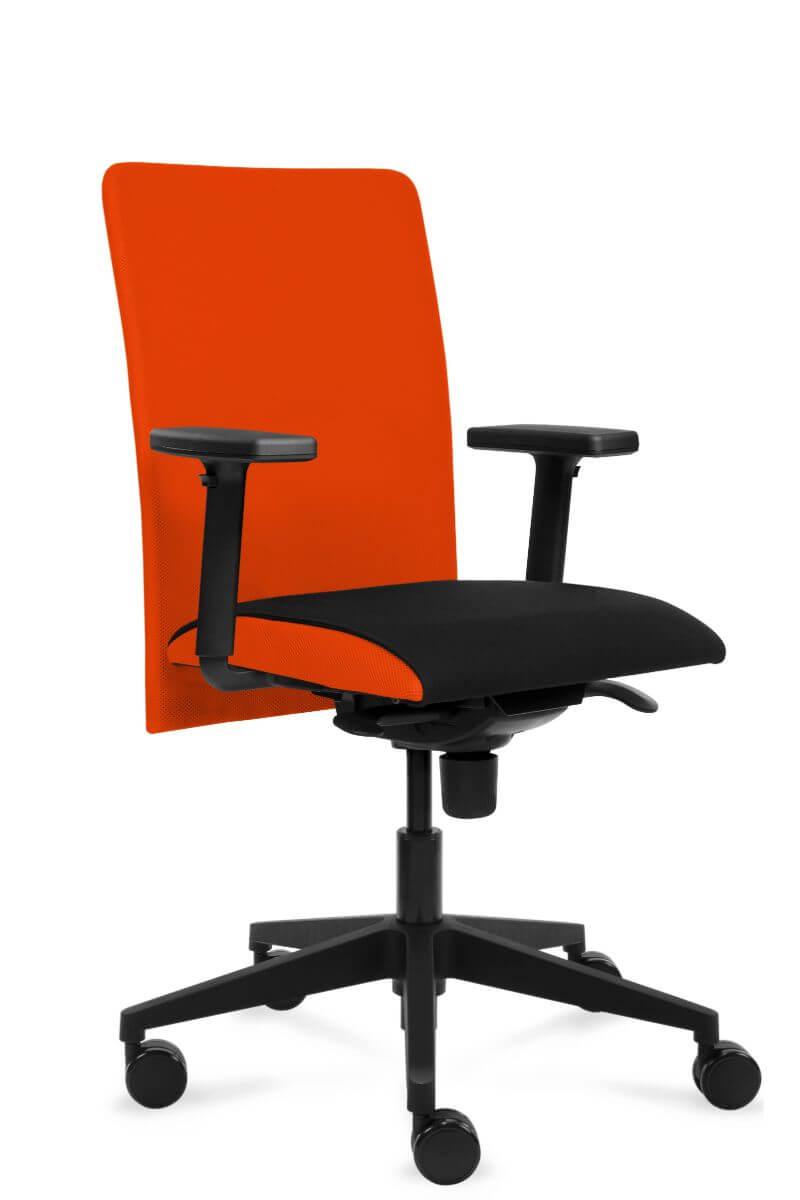 scaun ergonomic reglabil premium