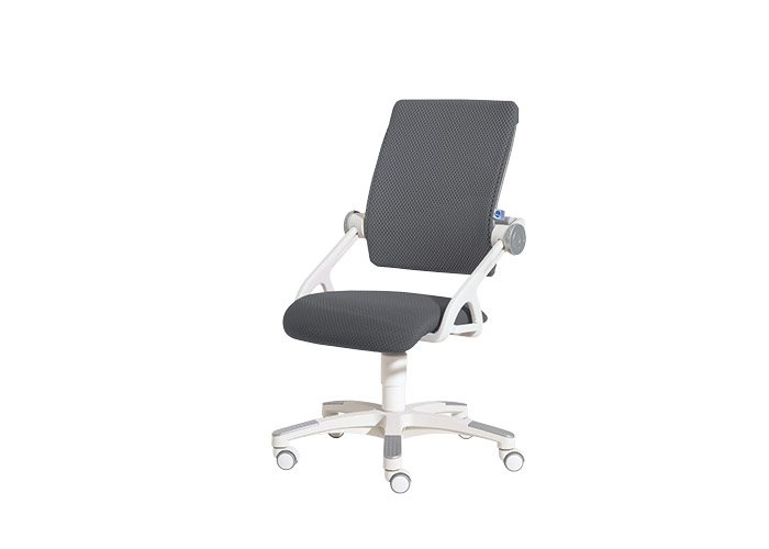 scaun ergonomic elevi