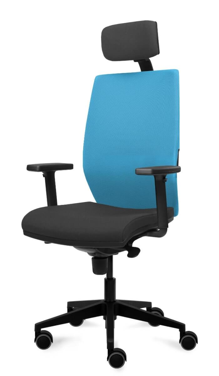 scaun ergonomic birouri