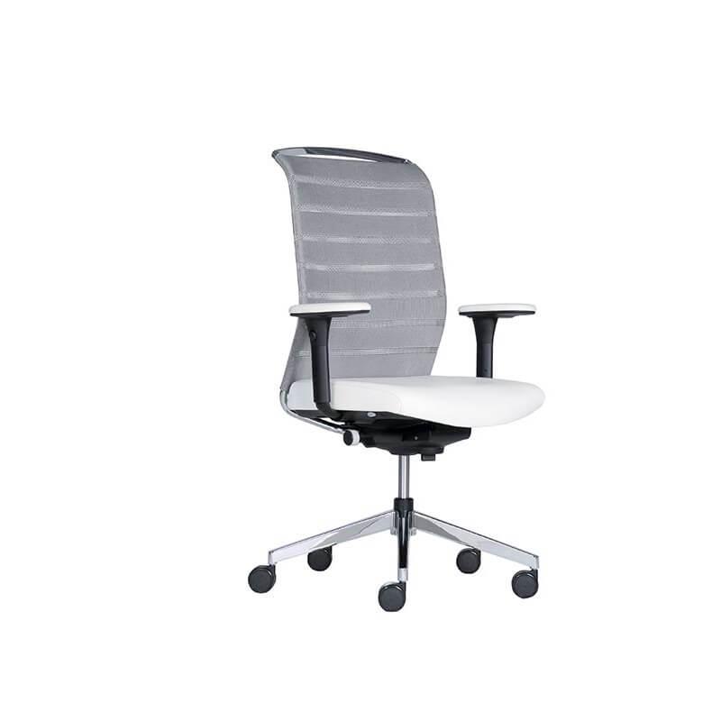 scaun ergonomic director
