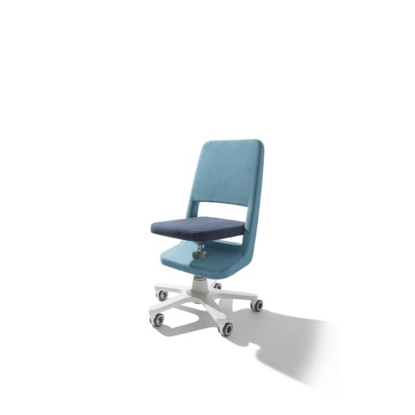 Scaunul birou ergonomic