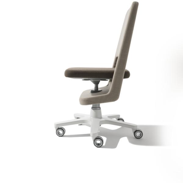 Scaunul ergonomic