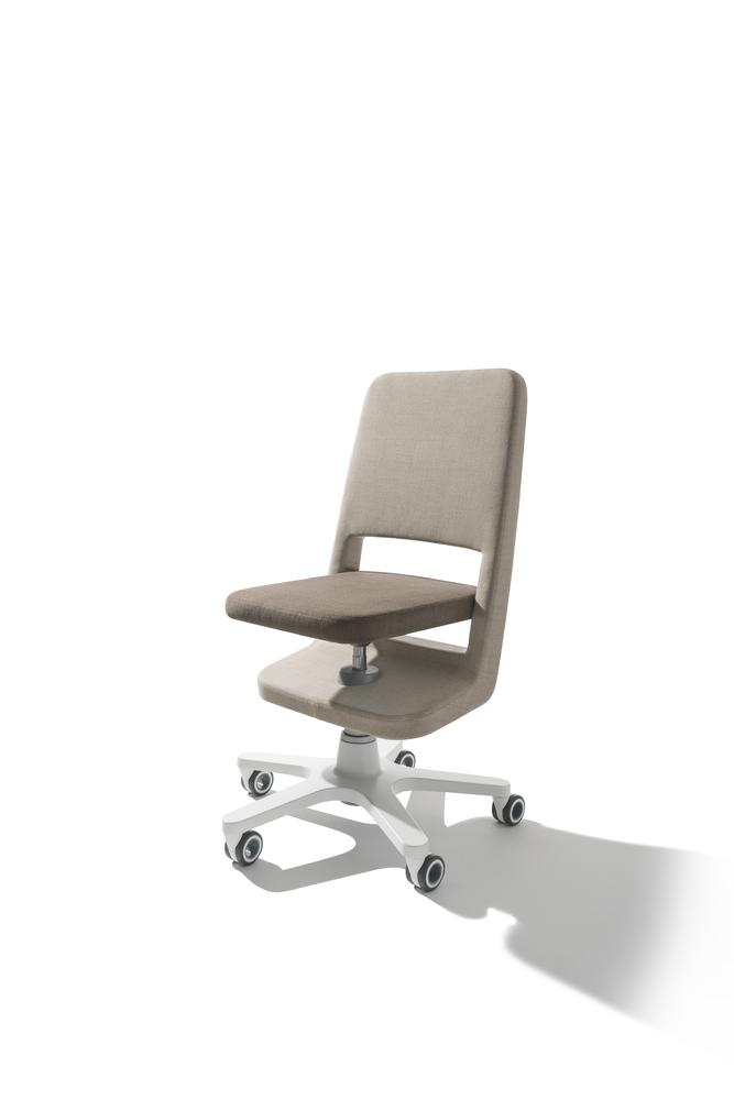 Scaunul ergonomic birou