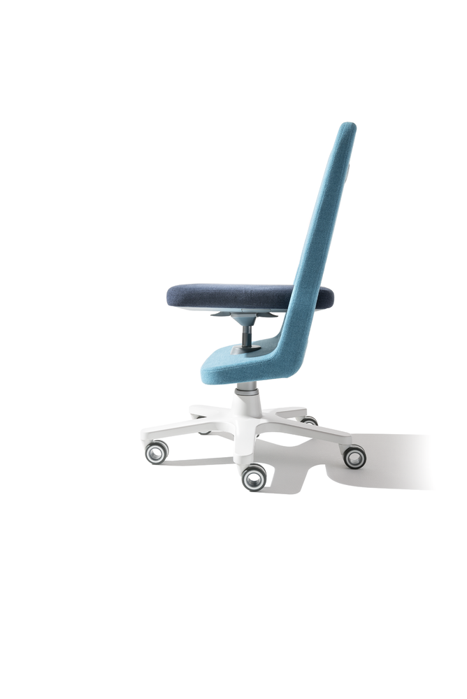 Scaunul ergonomic de birou