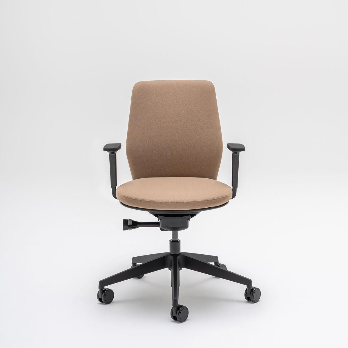 scaun ergonomic evo