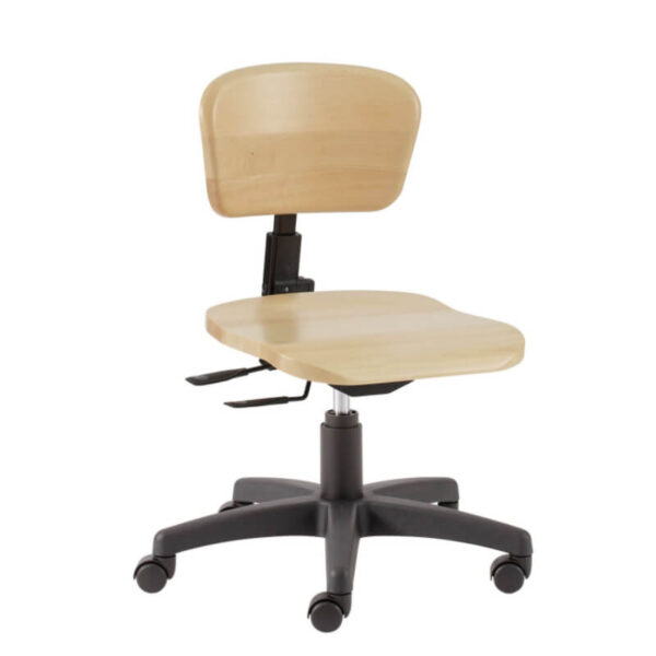 scaun profesori