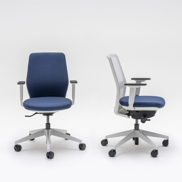 scaune ergonomice birou